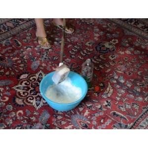 Nettoyeurs de tapis